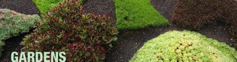 Queen Elizabeth Park planting (garden banner)