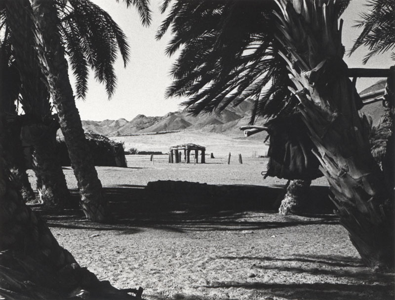 Palm House in Dahab in the Sinai Desert